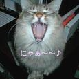 発声練習~♪
