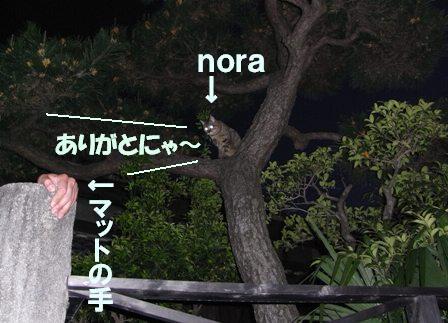 N841613a